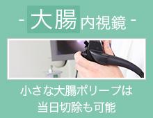 大腸内視鏡 小さな大腸ポリープは当日切除も可能